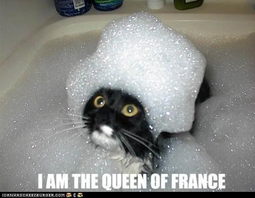 bathtub,bubbles,captions,Cats,french,marie antoinette,restoration,wig
