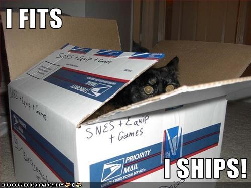 box captions Cats fits if it fits mail package post ships - 6516956672