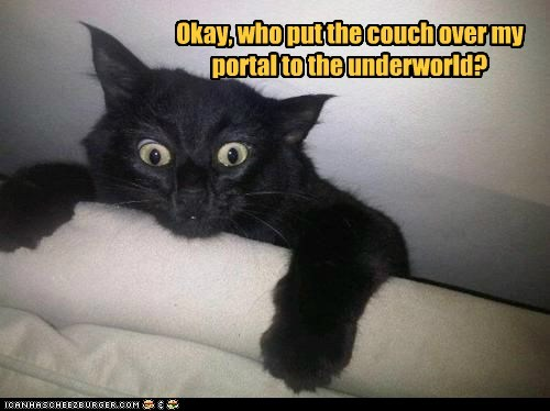 basement cat,block,captions,Cats,couch,furniture,hell,Portal,underworld