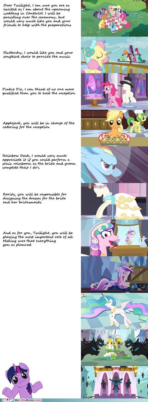 canterlot,twilight sparkle,wedding,you had one job