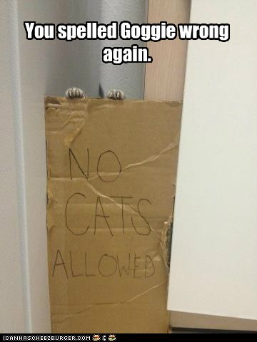 captions,Cats,dogs,goggie,no dogs allowed,rule,sign