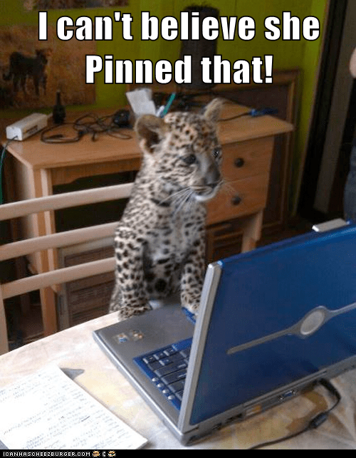 cant-believe captions computer cub leopard no taste pinned - 6518602240