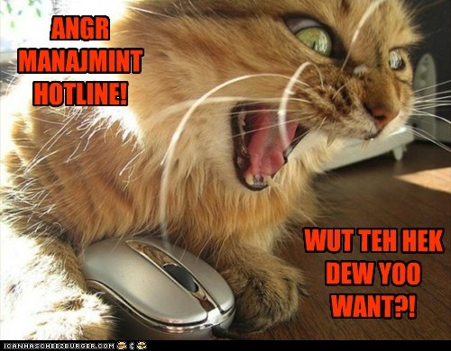 anger anger management captions Cats hotline phone telephone yell - 6519338496