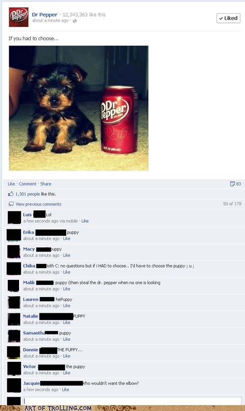 dr pepper,elbow,facebook,puppy