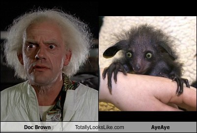 Doc Brown Totally Looks Like AyeAye