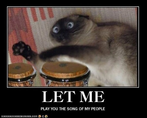 bongos,captions,Cats,derp,let me play you the song,let me play you the song of my people,Music,the song of my people