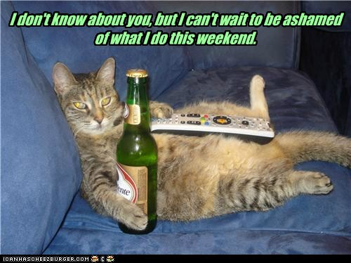beer lazy captions TV weekend Cats - 6519842048