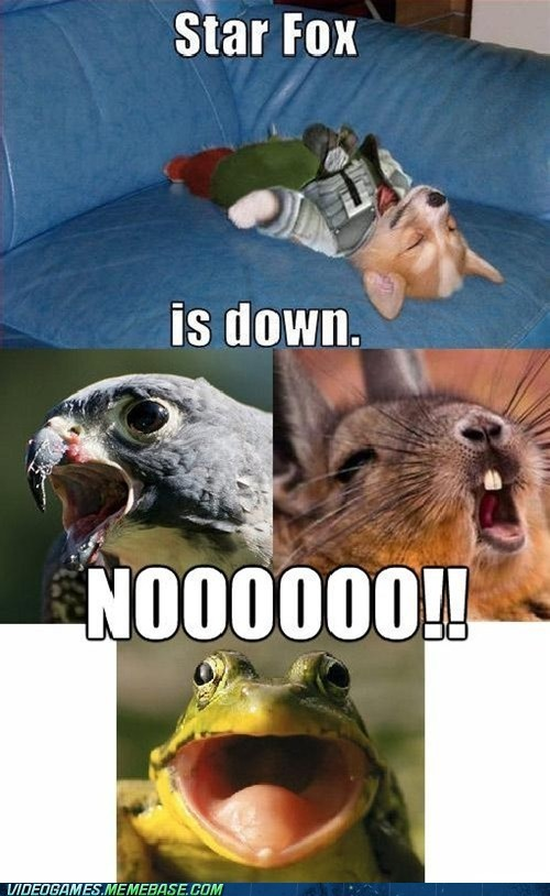 animals,birds,classics,dogs,frogs,hawks,no,NOOO,Star Fox,video games