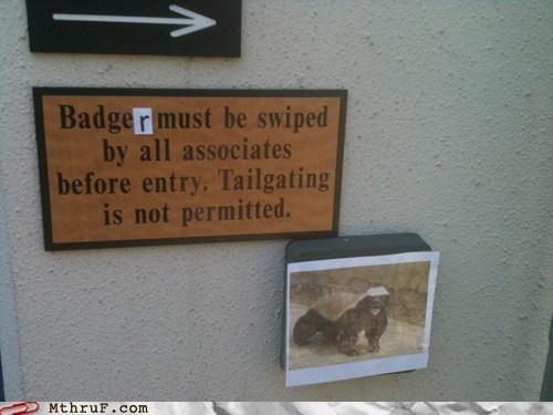 badge honey badger honey-badger-dont-care - 6520097792