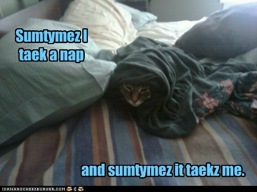 Sumtymez I taek a nap and sumtymez it taekz me.