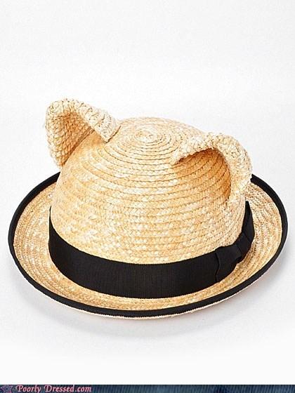 cat ears hat - 6520365824