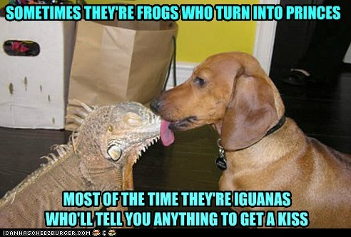SOMETIMES THEY'RE FROGS WHO TURN INTO PRINCES MOST OF THE TIME THEY'RE IGUANAS WHO'LL TELL YOU ANYTHING TO GET A KISS