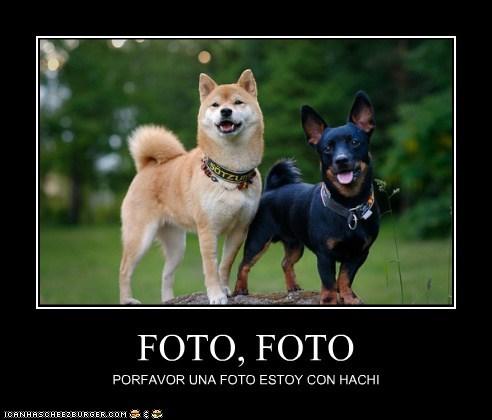 FOTO, FOTO PORFAVOR UNA FOTO ESTOY CON HACHI