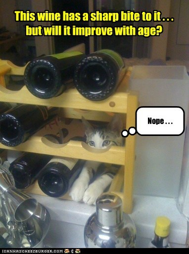 taste age captions wine Cats vintage