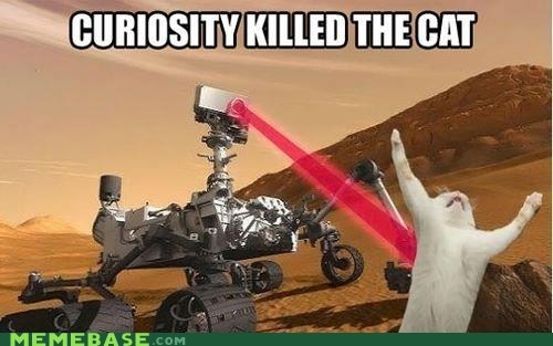 cat curiosity Mars red dot