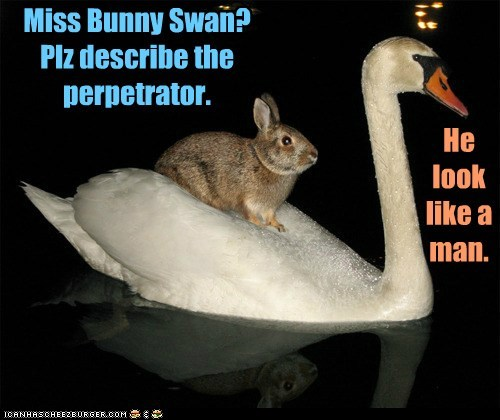 Miss Bunny Swan? Plz describe the perpetrator. He look like a man.