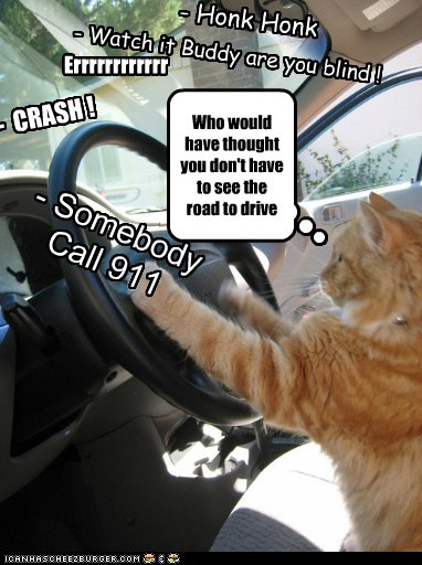 Who would have thought you don't have to see the road to drive - Honk Honk - Watch it Buddy are you blind ! - CRASH ! Errrrrrrrrrrr - Somebody Call 911
