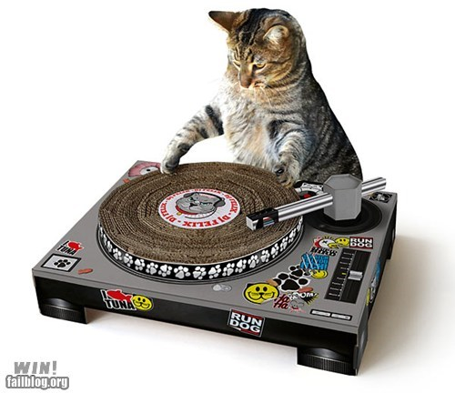 cat design dj scratching post turntable