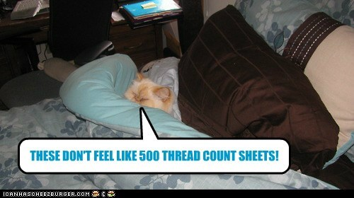 THESE DON'T FEEL LIKE 500 THREAD COUNT SHEETS!