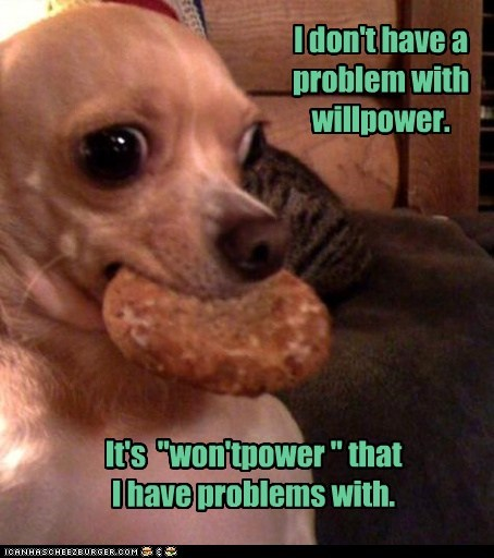 """I don't have a problem with willpower. It's """"won'tpower """" that I have problems with."""