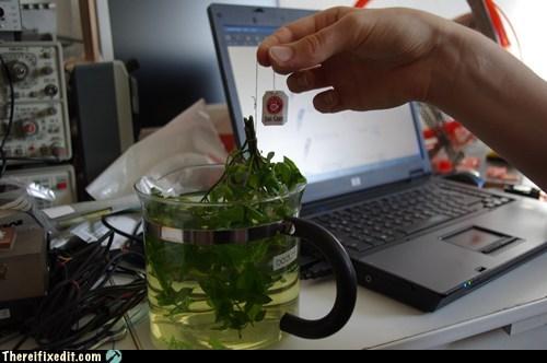 tea tea bag tea leaves tea time - 6524156160