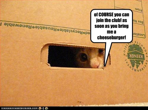 Cheezburger Image 6524440832