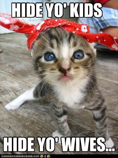 Antoine Dodson,bandanna,captions,Cats,hide yo kids,internet,meme,reference
