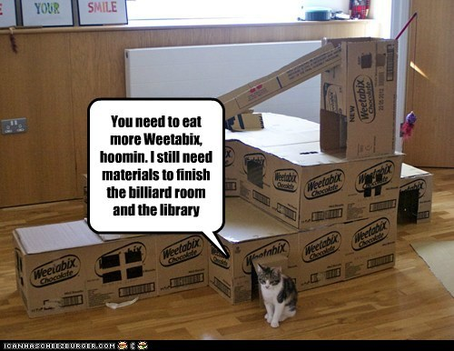 architect,billiards,box,build,captions,Cats,fort,library,nom,weetabix