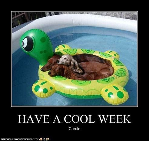 HAVE A COOL WEEK Carole