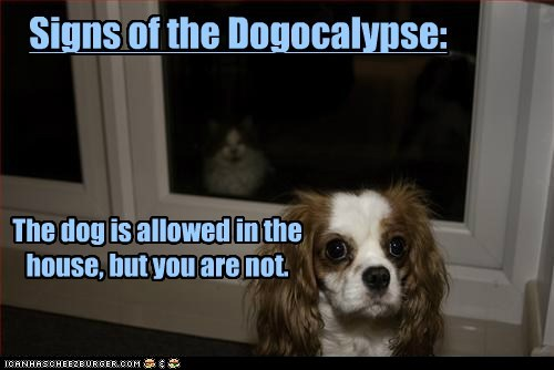Signs of the Dogocalypse: The dog is allowed in the house, but you are not.