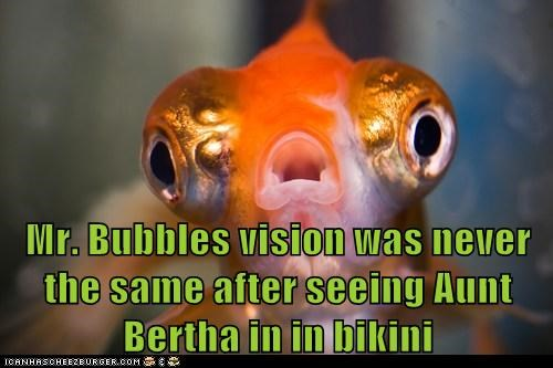 Mr. Bubbles vision was never the same after seeing Aunt Bertha in in bikini