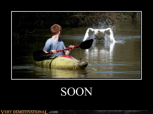 goose kayak scary SOON - 6526567936