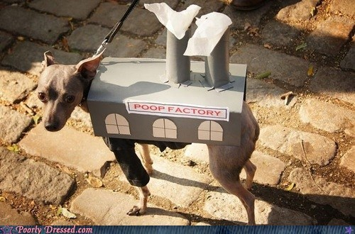 costume dogs poop factory - 6526783744
