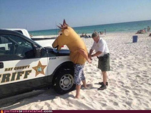 arrested,beach,costume,horseplay