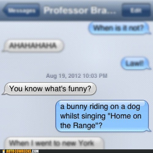 dogs,funny,home on the range,rabbit,visual,youre-right
