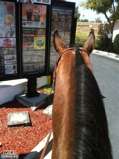drive thru fast food food horse - 6527067648