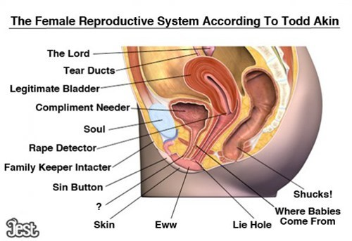 diagram,happy hour,politics,reproductive system,todd akin,women
