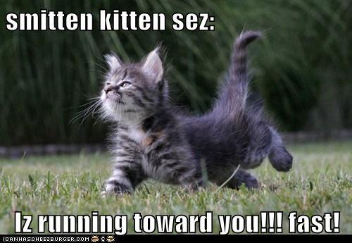Smitten Kitten Sez Iz Running Toward You Fast Cheezburger
