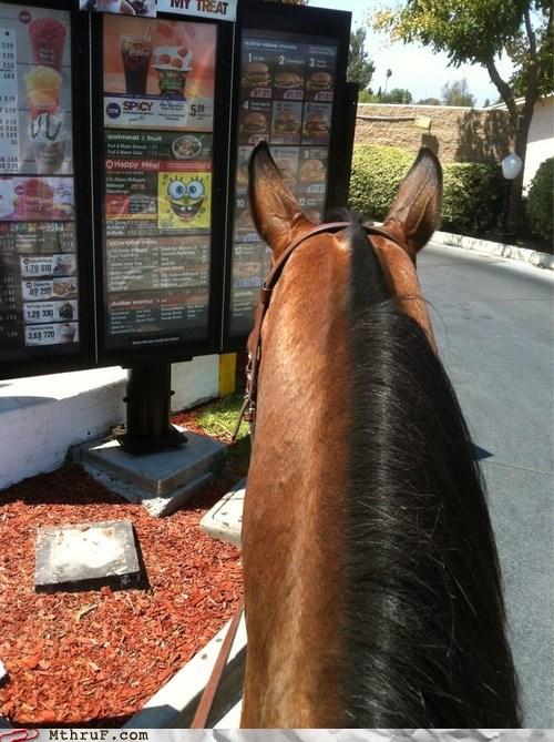 McDonald's,riding a horse,horses