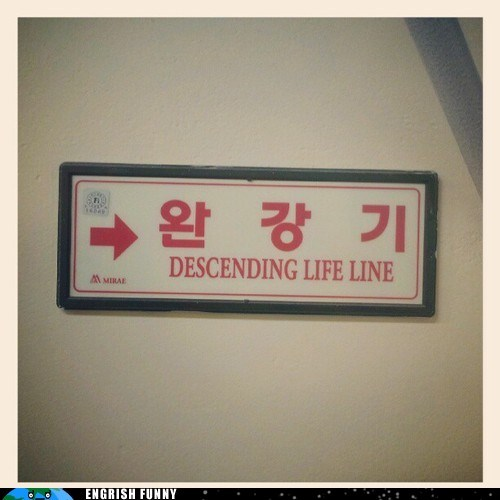 cryptic korea lifeline sign - 6527529216