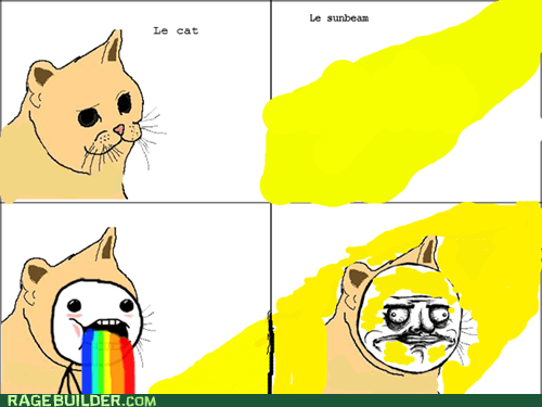 cat Cats happy me gusta Memes Rage Comics sun sunbeam sunbeams sunlight - 6528033536