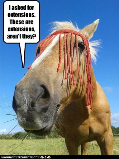 Extensions haircut horse raggedy ann ripped off - 6528175616