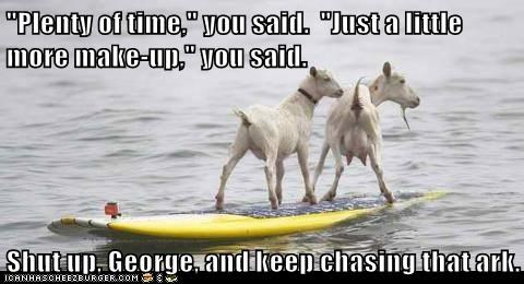 captions,goats,late,noahs ark,plenty of time,shut up,surfing,water,you said