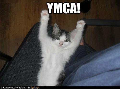 YMCA!