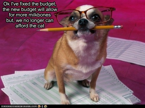 Ok I've fixed the budget, the new budget will allow for more milkbones but, we no longer can afford the cat