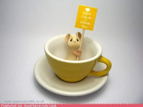keep calm,mouse,sign,teacup