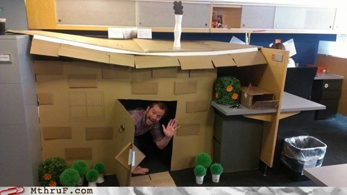 brofort,cardboard,cardboard house,office pranks