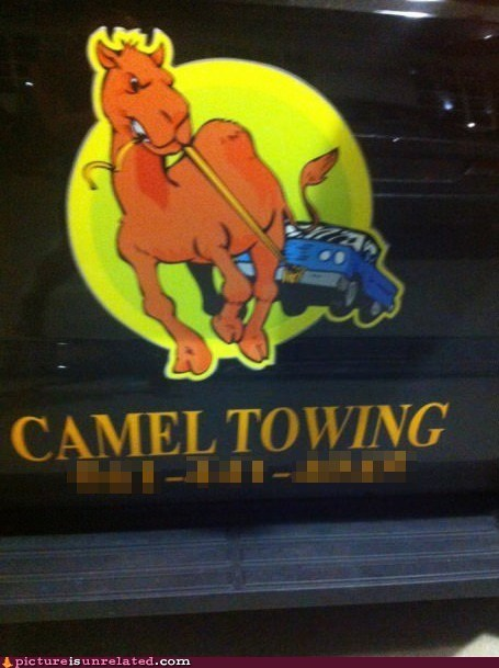 camel car towing company