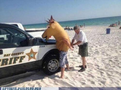 arrested horse head sorry for partying