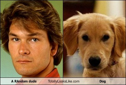 A RAndom dude Totally Looks Like Dog